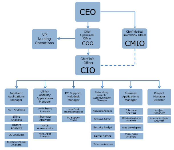 Organization Chart For Kitchen Department: Hospital IT Department Structure